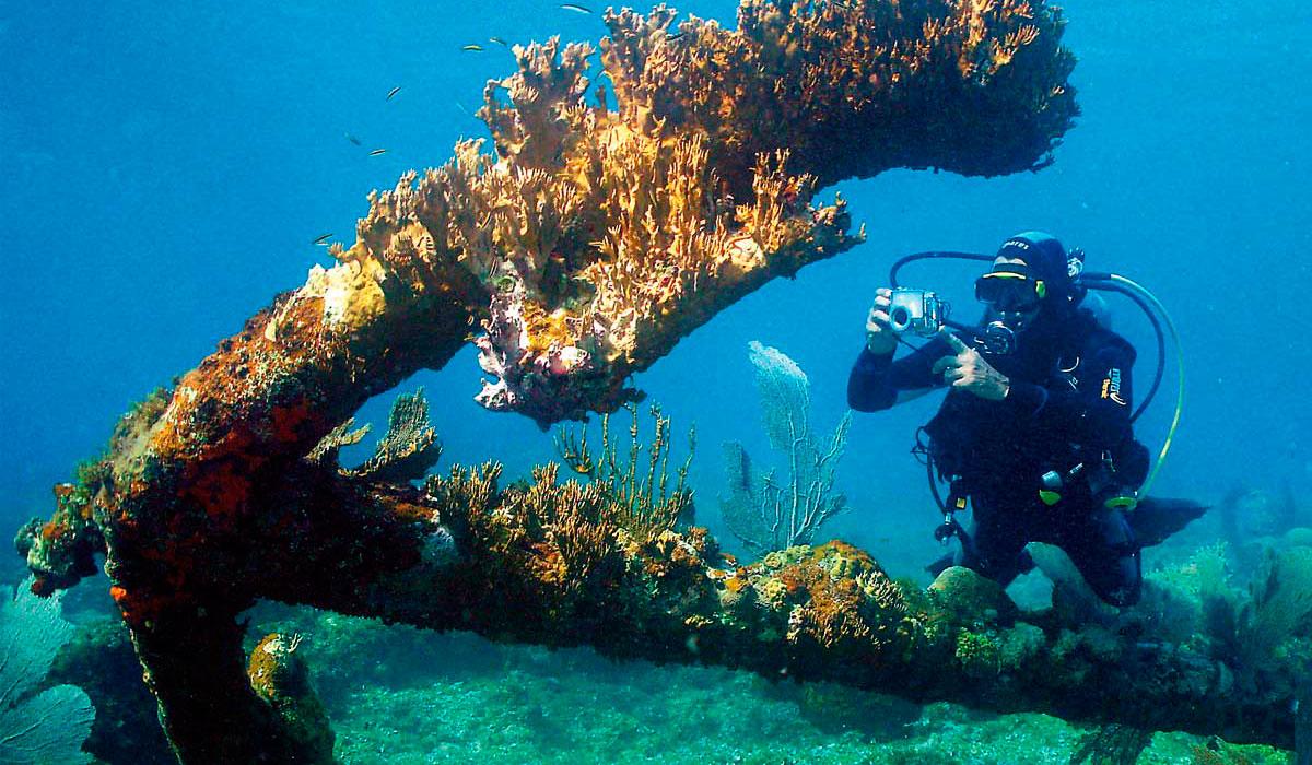 Inmersiones en El Colony. Isla de la Juventud.