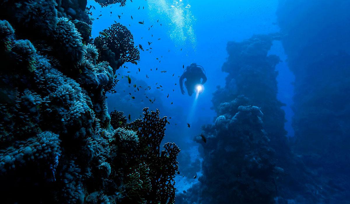 Buceo. Inmersiones desde Guardalavaca