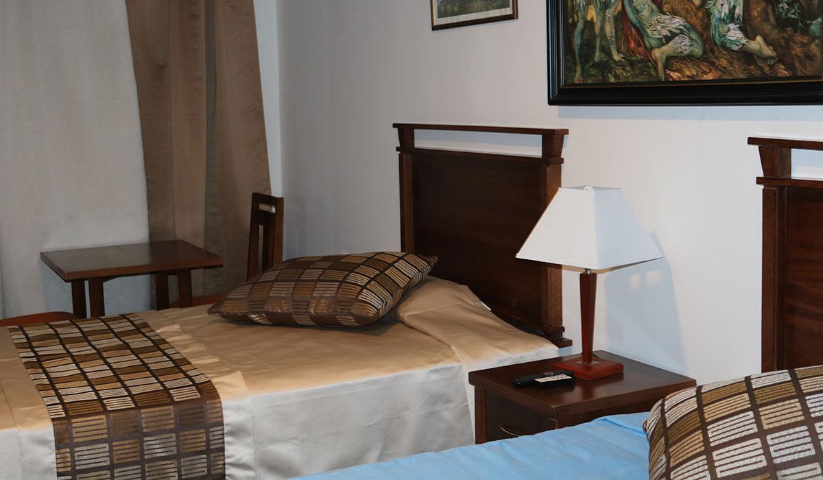 Hotel Pernik - Room