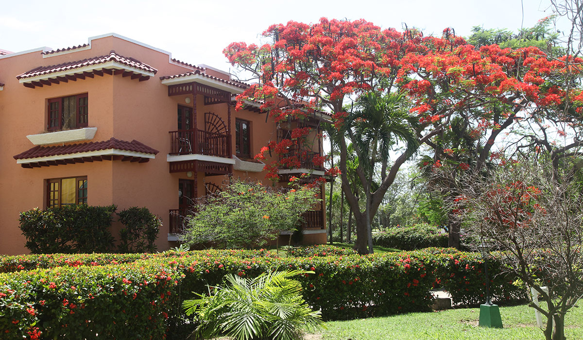 Hotel Starfish Cuatro Palmas - Areas exteriores