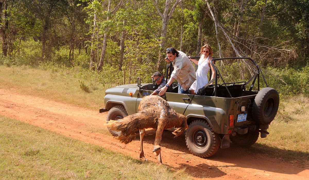 Villa Cayo Saetía - Jeep safari
